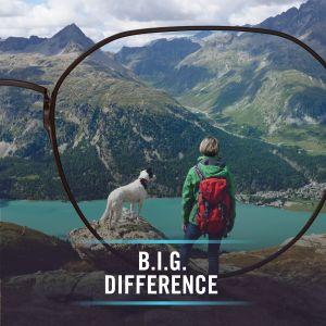 BIG Vision Boonstra Brillen